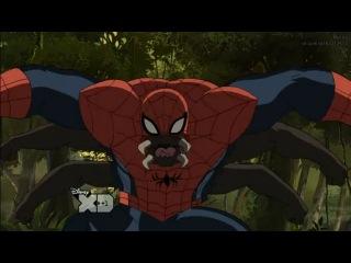 Совершенный человек-паук - 3 сезон, 7 серия, дикий паук (оригинал)